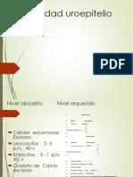Celularidad uroepitelio