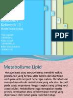 biokima_lemak kelompok 13.pptx