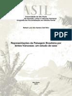 2012_RafaelLuisDosSantosDallOlio_VRev.pdf