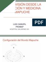 Educación y Medicina Mapuche