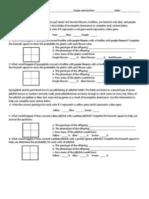 Incomplete Dominance Worksheet Dominance Genetics Genotype