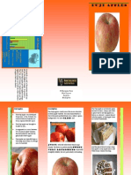 Apple Brochure K'Shaunna Ross