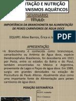 SEMINÁRIO BRANCHONETA