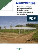 Produção de Uvas de Mesa - Região da Serra Gaúcha.pdf