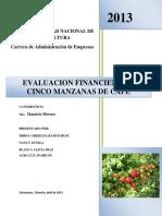 Informe de Evaluacion Financiero Cinco Manzanas de Cafe