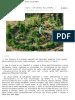 Come nasce un'orto sinergico.pdf