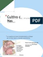 cultivodeexudadonasal-170521032829