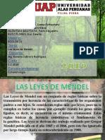 Biologia Leyes Mendel