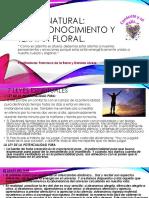 Salud Natural Autoconocimiento (1)[1]