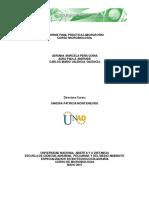 Informefinalprcticamicrobiologav2 150524203107 Lva1 App6891