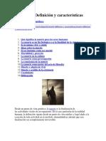 La Muerte Definición y Características