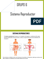 Sistema Reproductor Dia