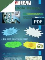 MICOLOGIA MEDICA DE ENFERMERIA.pptx
