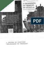 a organizacao do trabalho no século 20 - geraldo augusto pinto