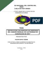 Rupay Güere.pdf