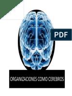 Organizaciones Como Cerebro - Organizaciones  Como Cultura