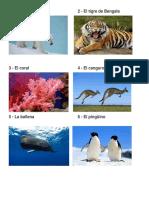 animale y planta en peligro de extinsion mundial.docx