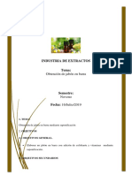 Informe-del-jabon-unido-1