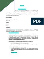 EL ENFOQUE DE SISTEMAS (TGS 2).docx