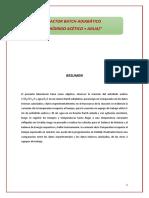 Informe de Reactor Adiabatico
