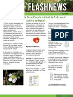 flashnews-Fresa.pdf