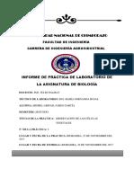 Universidad Nacional de Chimborazo Informe