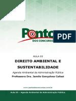 Aula3_Apostila1_SRLSGCTDG9.pdf