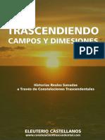 Trascendiendo Campos y Dimensiones Historias Reales Sanadas a Través de Constelaciones Trascendentales