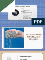 Mecanismos de Penetracion Del Agua (G. 06)