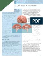 Brain Brief Right Brain-Left Brain Final