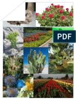 Karishma Plants Photos
