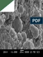 SEM image of fly ash based geopolymer 1000
