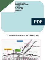 Partie I - Différenciation musculaire - Myogenèse - Chap 5.pdf