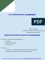 Partie VII - Transmission Synaptique