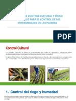 Medidas de Control Cultural y Fisica GRUPO 2
