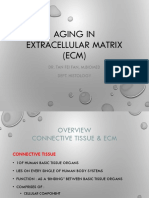 Pert 43 - Aging in ECM - dr. Tan Fei Fan, M.Biomed (Dept. Histologi) .ppt