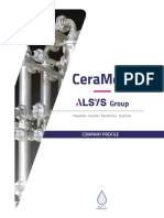CeraMem-Alsys Group Company Profile