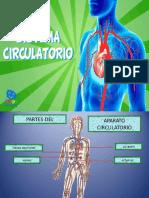 Power Poin El Sistema Circulatorio