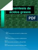 Biosíntesis Ácidos Grasos 2019