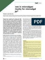 YANDU Y XU2015-Phytohormones in Microalgae