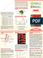 Ficha Técnica Tomate - CMCBA