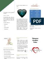 Primeros Auxilios Signos Vitales-Pulso