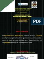 Embriologia Del Aparato Reproductor Femenno_1