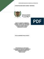 Trabajo de Investigación Grupo Graña y Montero