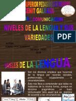 Comunicacion Niveles de La Lengua