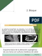 2 Bloque Biometalurgia