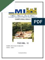CAMPO_BULO BULO.docx