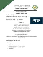 Informe de Práctica Bovinos de Leche