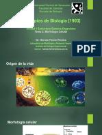 PrincBiol Tema 2 - Origen de La Vida y Morfología Celular