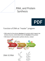 DNA RNA and Protein Synthesis 9282497